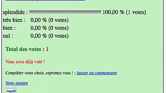 sondage-with-pub-03.png